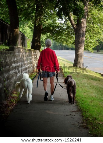 Woman walking poodles