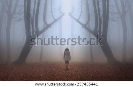 Woman walks the trail of a fairytale magic forest in a foggy autumn day - stock photo