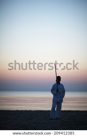 Woman warrior; silhouette of woman in kimono with sword on seascape background - stock photo