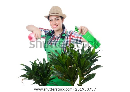 Woman watering plants on white - stock photo