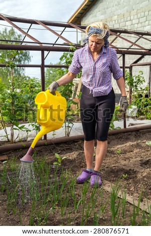 Woman watering the beds with green onions from a yellow watering can - stock photo