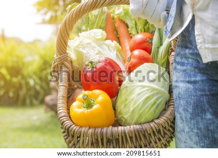 Woman wearing gloves with fresh vegetables in the basket in her hands. Close up - stock photo