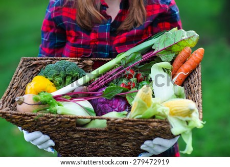 Woman wearing gloves with fresh vegetables in the box in her hands. Close up - stock photo