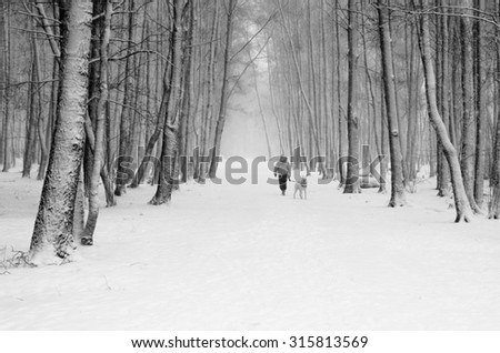 Woman with a dog on a snowy winter alley - stock photo