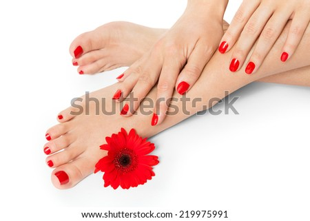 Woman with beautiful red manicured nails displaying her bare feet with her hands on her ankles with a fresh red Gerbera daisy in a beauty and fashion concept - stock photo