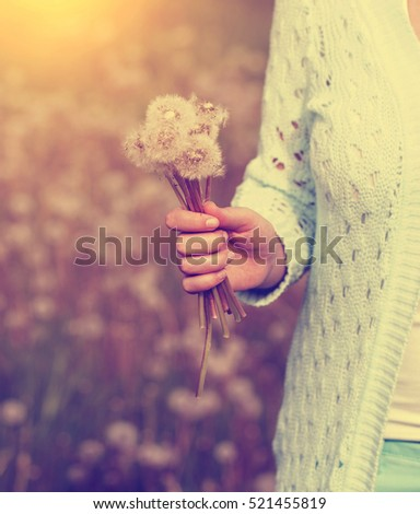 Woman with dandelion flower in sunset