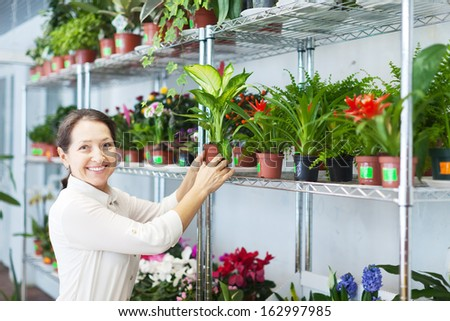 woman with Dieffenbachia plant surrounded by different flowers  - stock photo