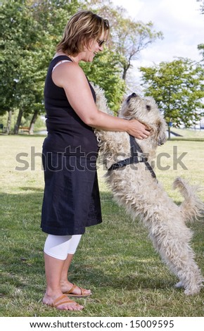 Woman with dog in the park, both have happy expressions - stock photo