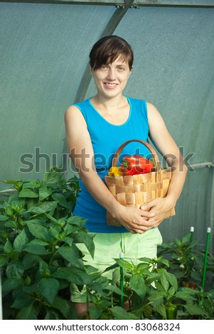 woman with harvested pepper in the greenhouse - stock photo