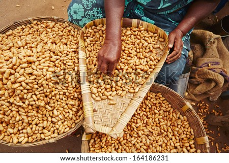 Woman with piles of peanuts on the street market in India.