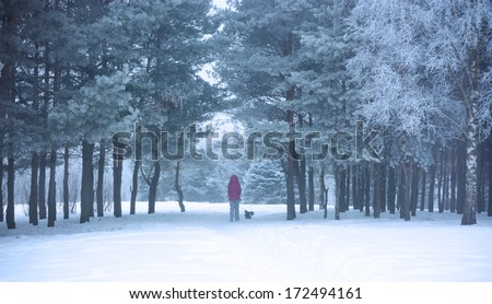 Woman with Small Dog Walking in Snowy Winter Park. Winter Lifestyle. - stock photo
