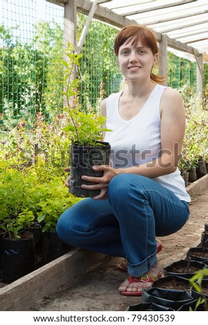 woman with sprouts  in pots  at plant