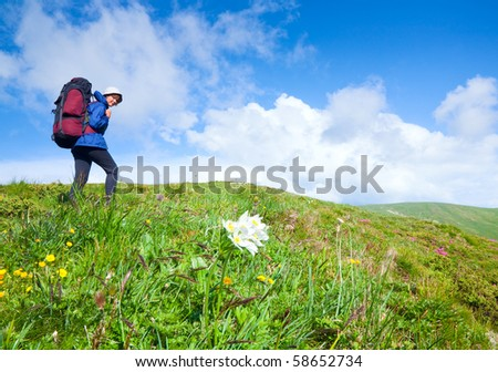 Woman with tourist knapsack on summer blossoming mountain (Ukraine, Carpathian Mountains)