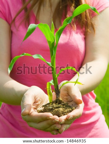 woman with young leaves - stock photo