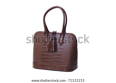 Womanish brown leather bag. Isolated on a white background.