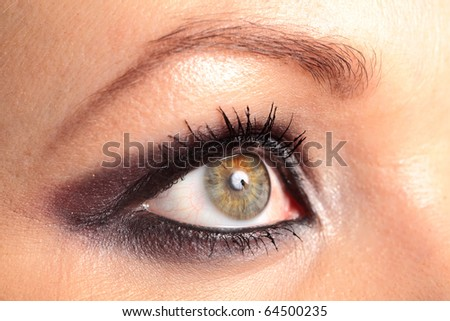 Womans Eye With Make-Up and Studio Light Reflection
