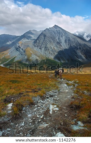 Women and horse. Altay - stock photo