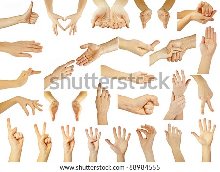 women and man hand on the white backgrounds