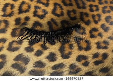 Women eye, close-up, concept of sadness, leopard pattern - stock photo