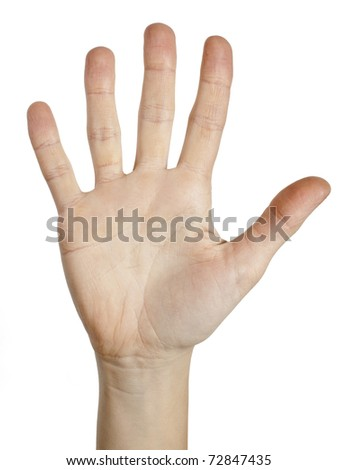 women hands on the white backgrounds
