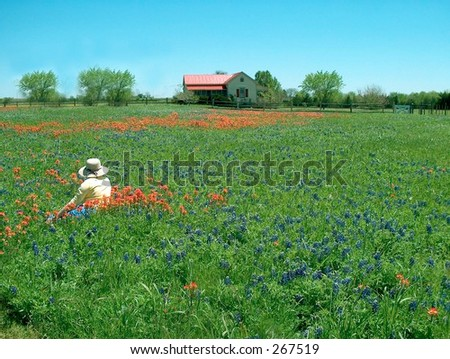 Women in a bluebonnet pasture