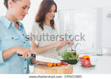 Women preparing salad together  in the kitchen  - stock photo