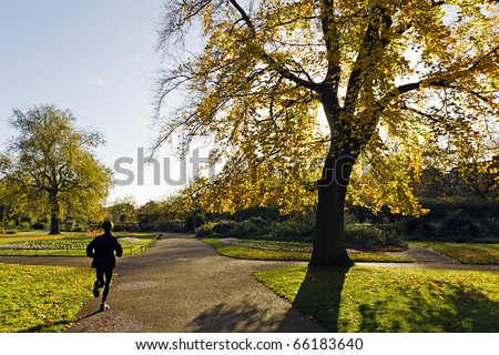 Women running in the morning. Hyde Park, London - stock photo