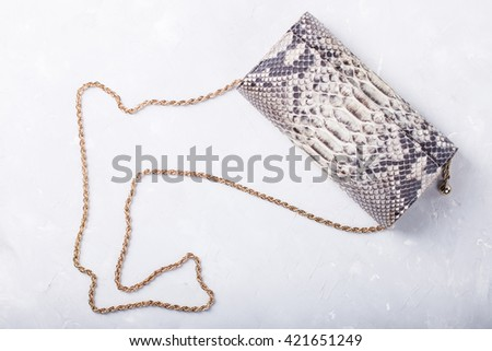 Women's bag clutch bag of leather of reptiles.Still life of fashion woman.Women's set of fashion accessories .Copy space.selective focus. - stock photo