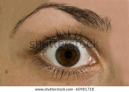 Women's frightened eyes - stock photo