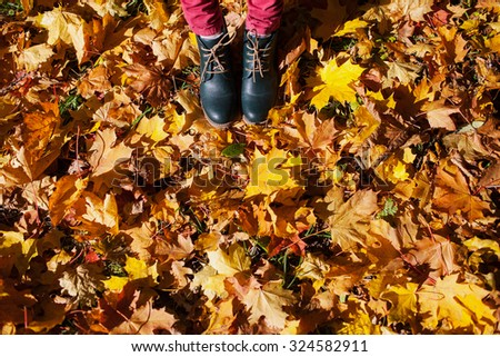 Women's shoes and autumn foliage - stock photo