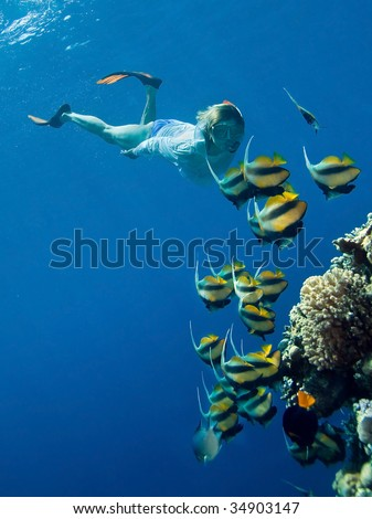 Women snorkeling in sea - stock photo