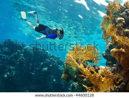 Women snorkeling near coral reef - stock photo