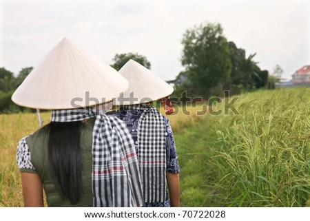 Women wearing traditional Vietnamese hats working in rice paddy with a famous southern