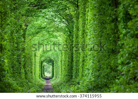 Wonder of Nature - Real Tunnel of Love, green trees and the railroad,  Ukraine. - stock photo