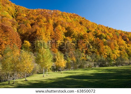Wonderful autumn in the mountains - stock photo