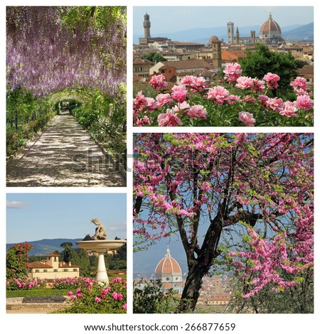 wonderful blooming plants in springtime in Florence - group of images - stock photo