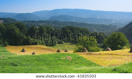 wonderful hills, forest and haystacks - stock photo