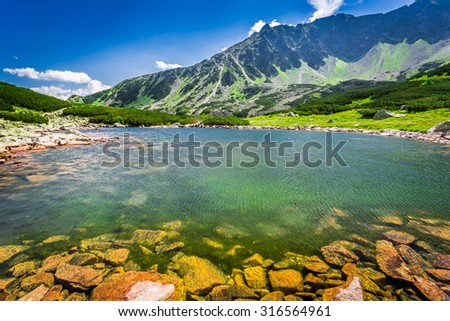 Wonderful lake in the mountains