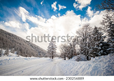 Wonderful landscape of a winter scene, with road and trees covered by snow after a huge snowfall, and a pleasant blue and cloudy sky - stock photo