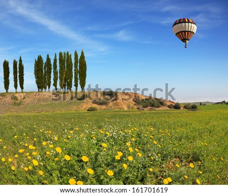 Wonderful meadow with green grass and yellow buttercups. Alley slender cypress trees beautifully into the landscape. A huge balloon flying in the blue sky