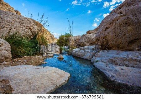 Wonderful Middle Eastern landscape. The stream of cold pure water flows through the beautiful gorge Ein Gedi, Israel - stock photo