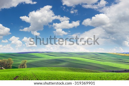 Wonderful panoramic view of fields in beautiful colorful and striped hills, super big size - stock photo