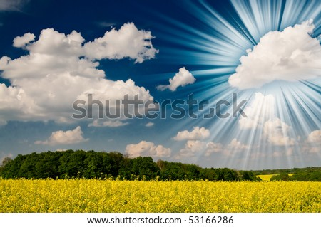 Wonderful rapefield and cloudscape with sunbeams by springtime. - stock photo