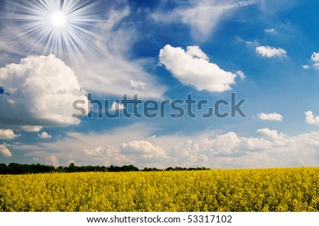 Wonderful rapefield and fantastic cloudscape with sunbeams by springtime. - stock photo