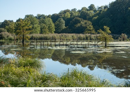 French Countryside Stock Images RoyaltyFree Images  Vectors - French country side