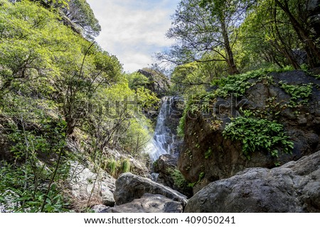 Wonderful Salmon Creek Falls on a warm day, shaded by giant oak & cypress trees along the water's edge. Photographed near Highway 1, on the Big Sur coastline, California Central Coast, CA. - stock photo