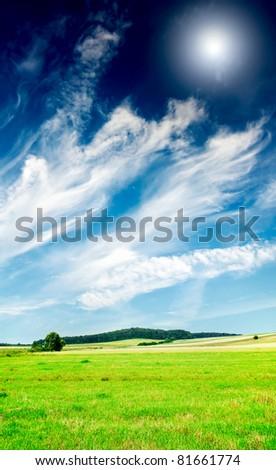 Wonderful serene summer meadow and wonderful blue sky. - stock photo