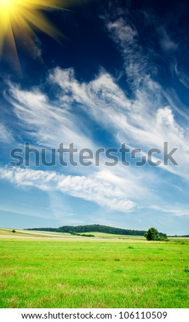 Wonderful summer meadow and  blue sky. - stock photo