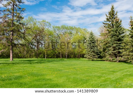 wonderful sunny day in park with green trees, grass and blue cloudy sky - stock photo