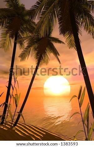 wonderful tropical sunset - stock photo